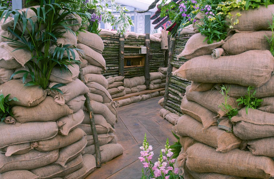 This spic-n-span, cartoon-version of a WWI trench, used as a setting for flowers, seems misguided. Image courtesy of the RHS.