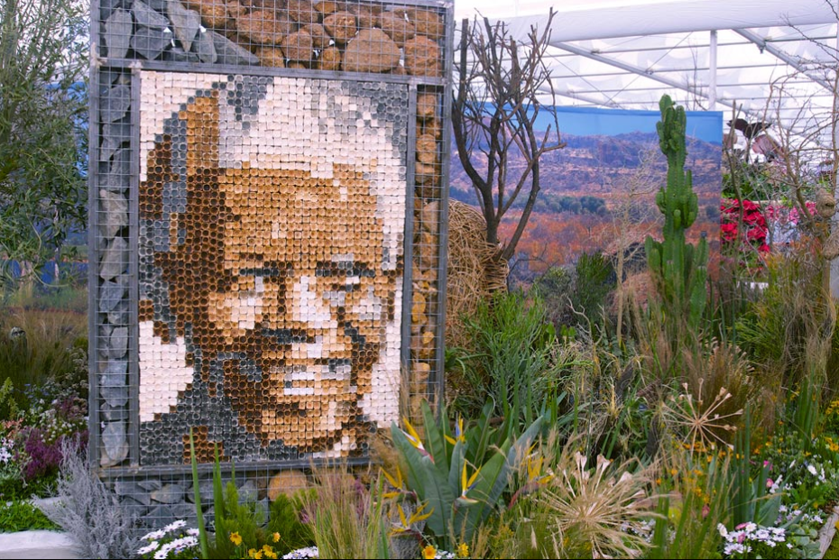 Nelson Mandela's face...in rocks? Image courtesy of the RHS.