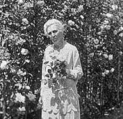 Harriett Risley Foote (born 1863, died 1951) was America's foremost expert on All-Things-Rose.