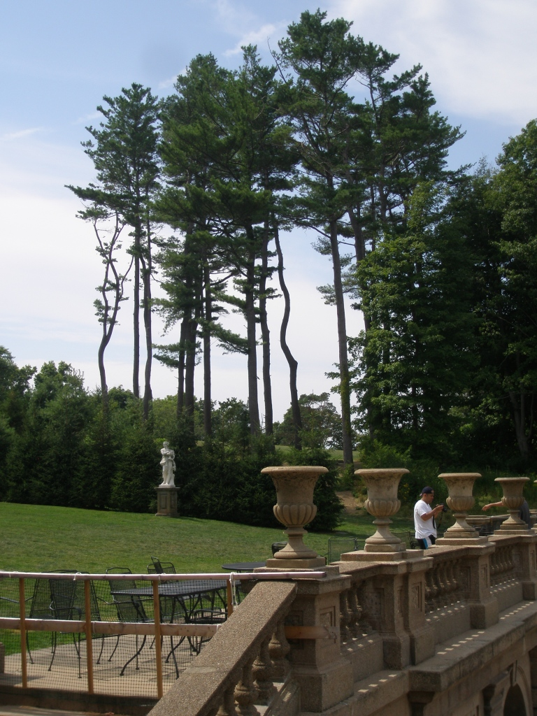 At tje Casino's balustrade, we look back uphill, toward a grove of old pine trees.