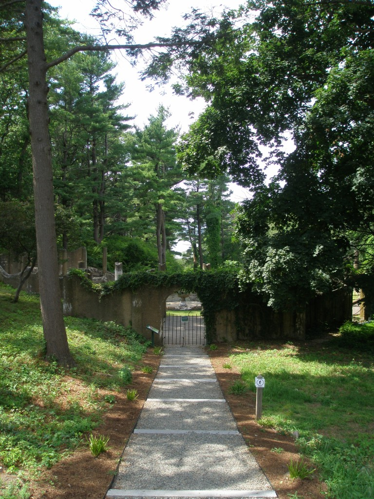 Path to the Rose Garden