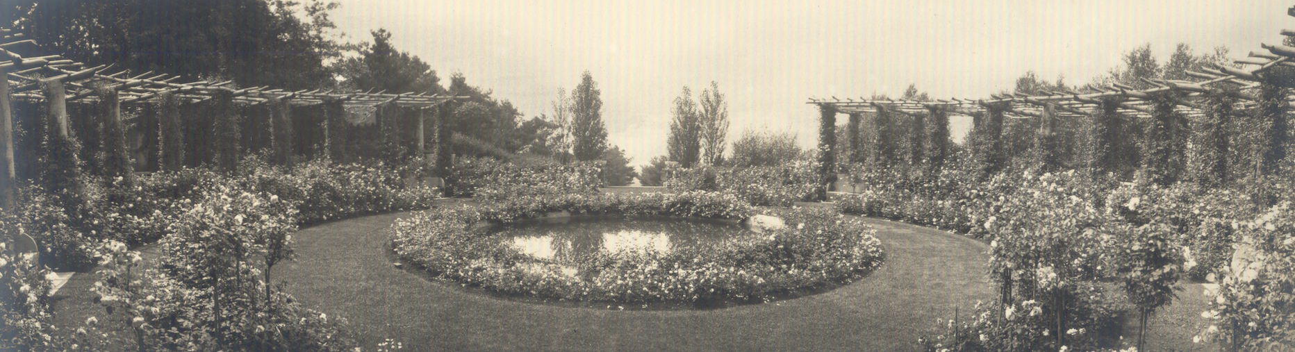 Vintage photo of the Rose Garden, circa 1915. Image courtesy of the Trustees of Reservations, Archives & Research Center