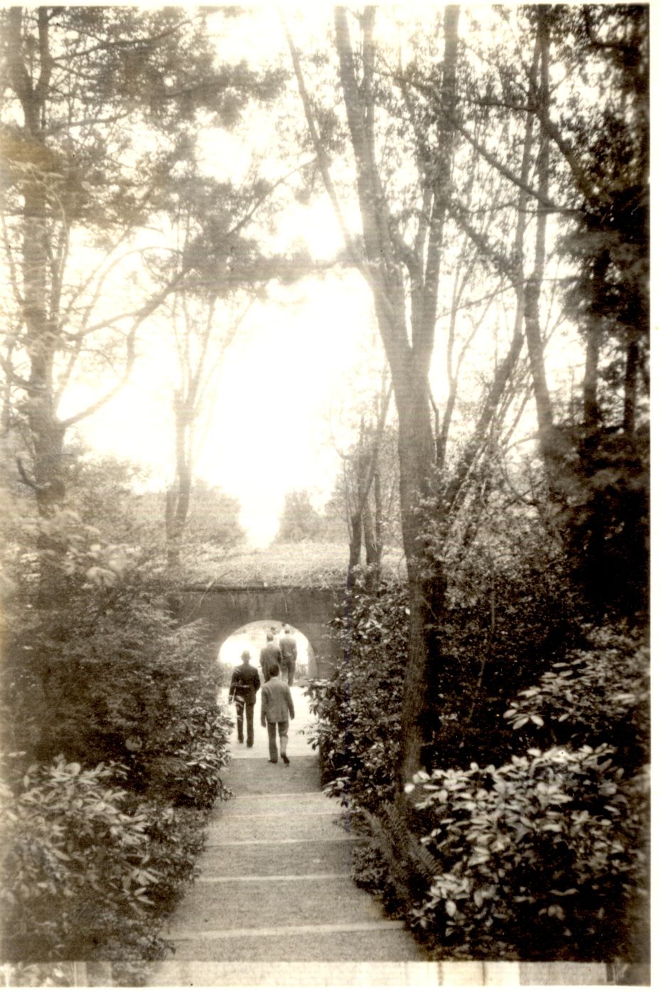 Vintage photo of path to Rose Garden, circa 1930s. Image courtesy of the Trustees of Reservations, Archives & Research Center