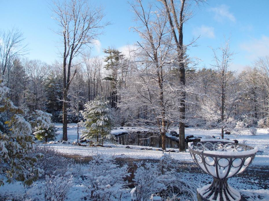 My New Hampshire meadow & pond, on Nov. 14, 2014. This has now given me incentive to write about Warmer Places.