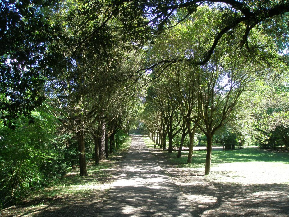 Path from the Ticket Office, toward the Gate to the Garden at Sacro Bosco