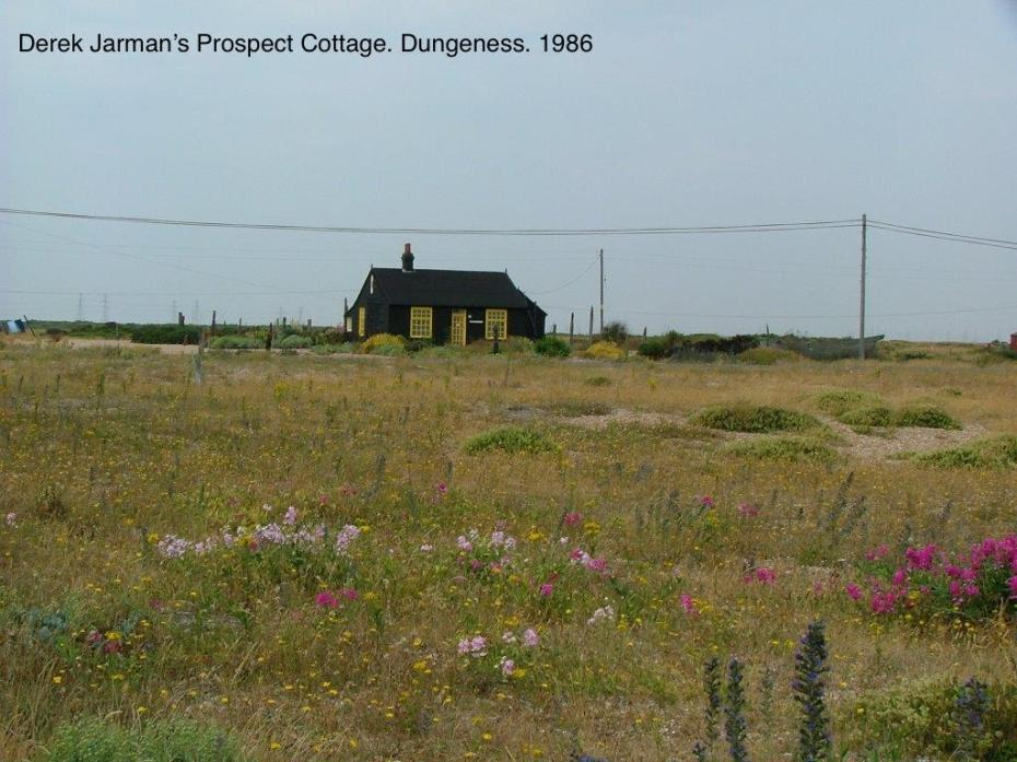 The View of Prospect Cottage, from the shingle beach. All of the photos you next see of Derek Jarman's gardens at Prospect Cottage were taken by the English garden designer Anne Guy.