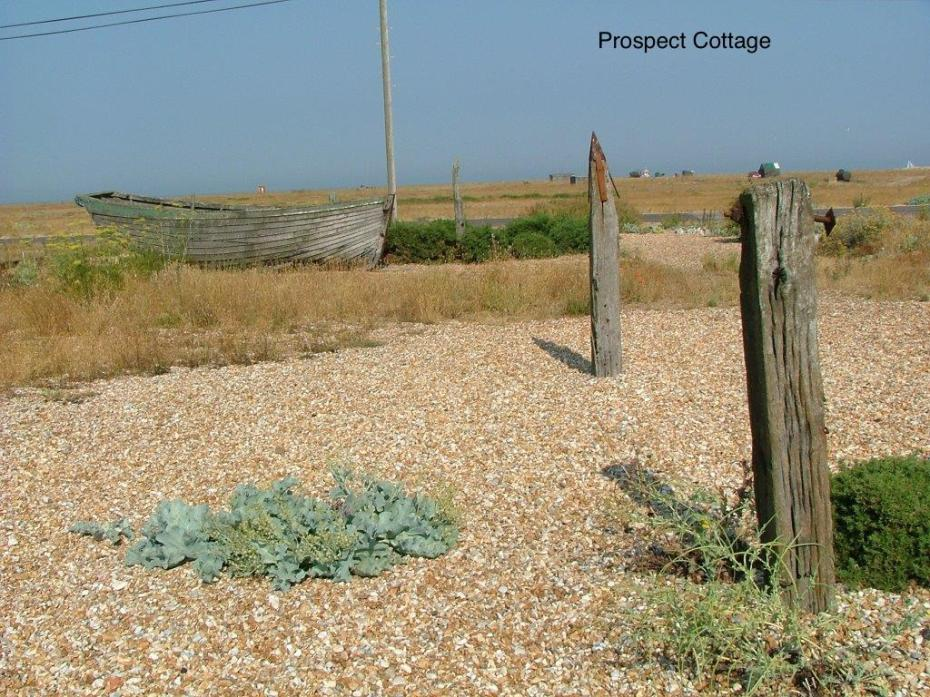 Prospect Cottage Garden
