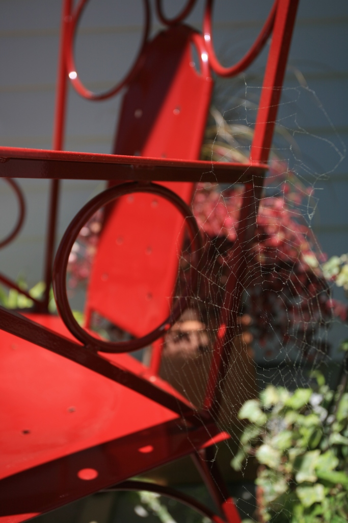 A spider's web and my Lorenzo Arm Chair harmonize, on my front porch in New Hampshire.