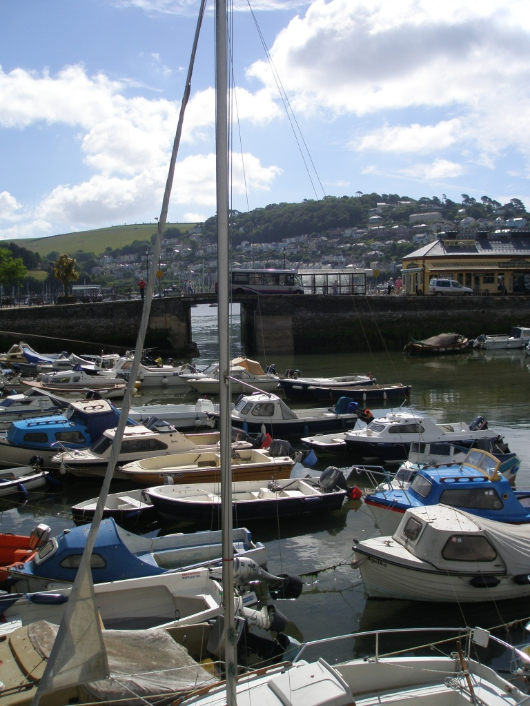 The Boat Float: with the Town Jetty, and the River Dart beyond