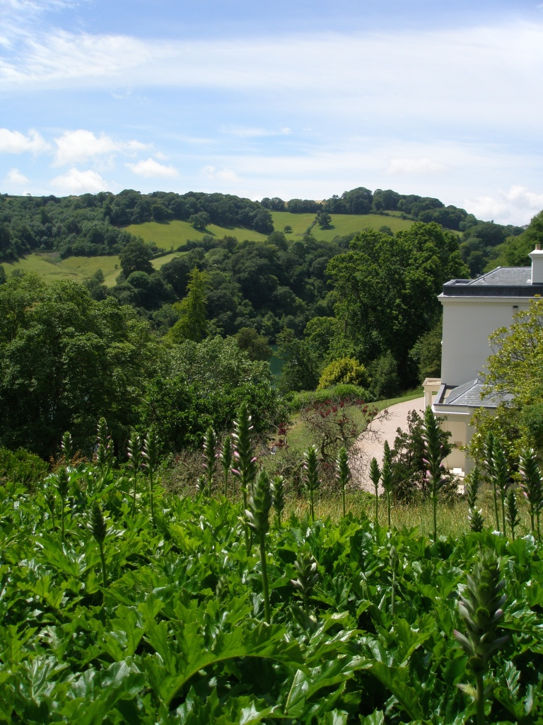 From the Top Garden's path, we had this fine view toward the hills, on the western side of the River Dart.