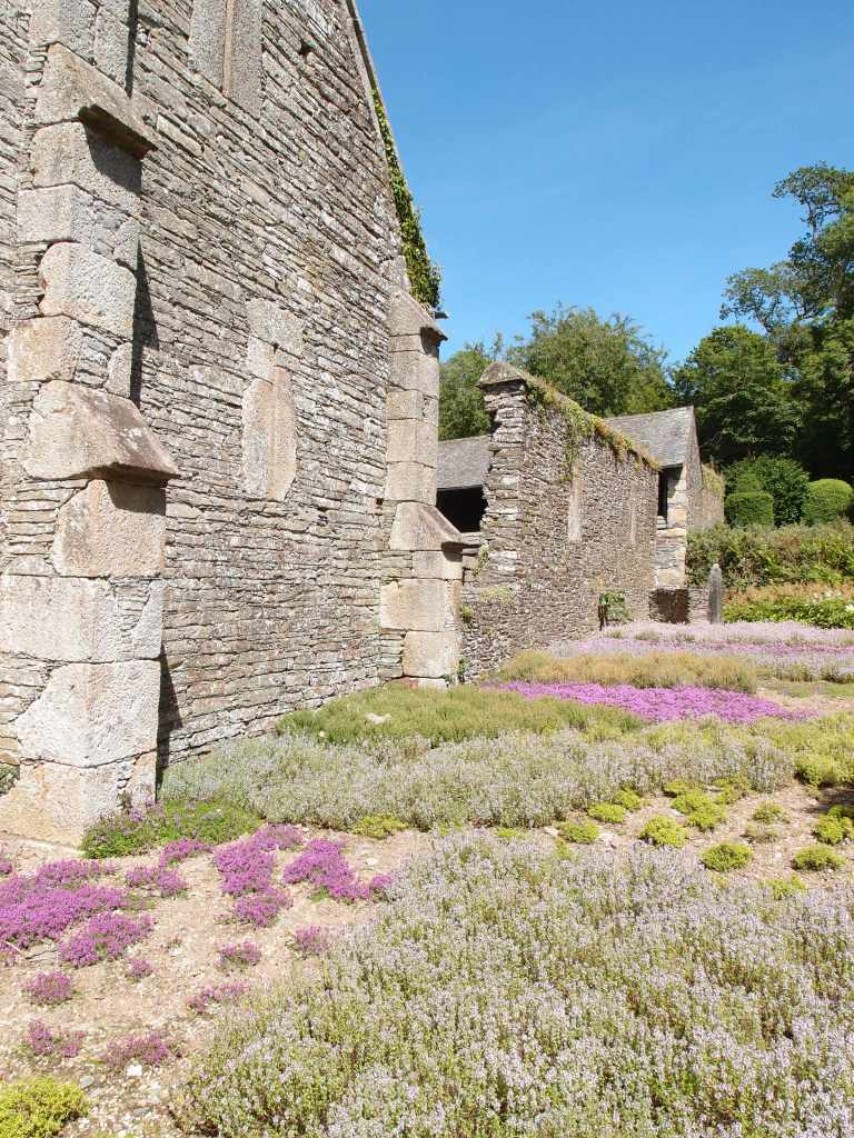 Outside of the Great Barn, I found this superb Herb Garden. Remember, the walls which form the backdrop for this Garden were built in 1300. Walls of such antiquity are the Ultimate Garden Ornament.