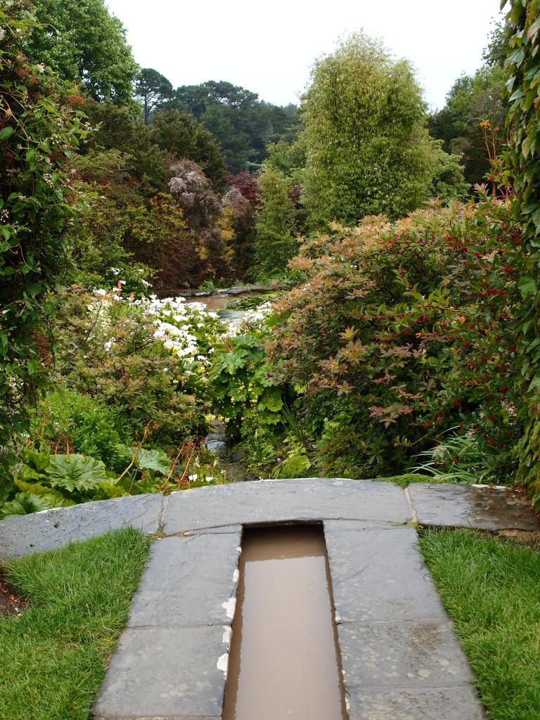 From the bottom-most edge of the Rill Garden, we look downstream, toward the Lower Pond