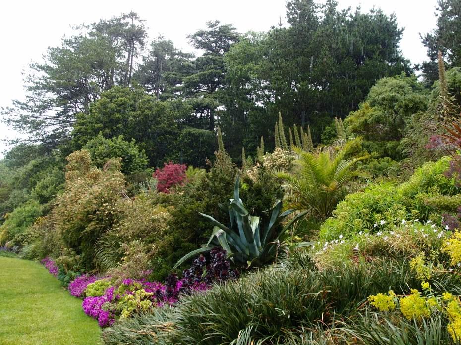 Exotics Garden