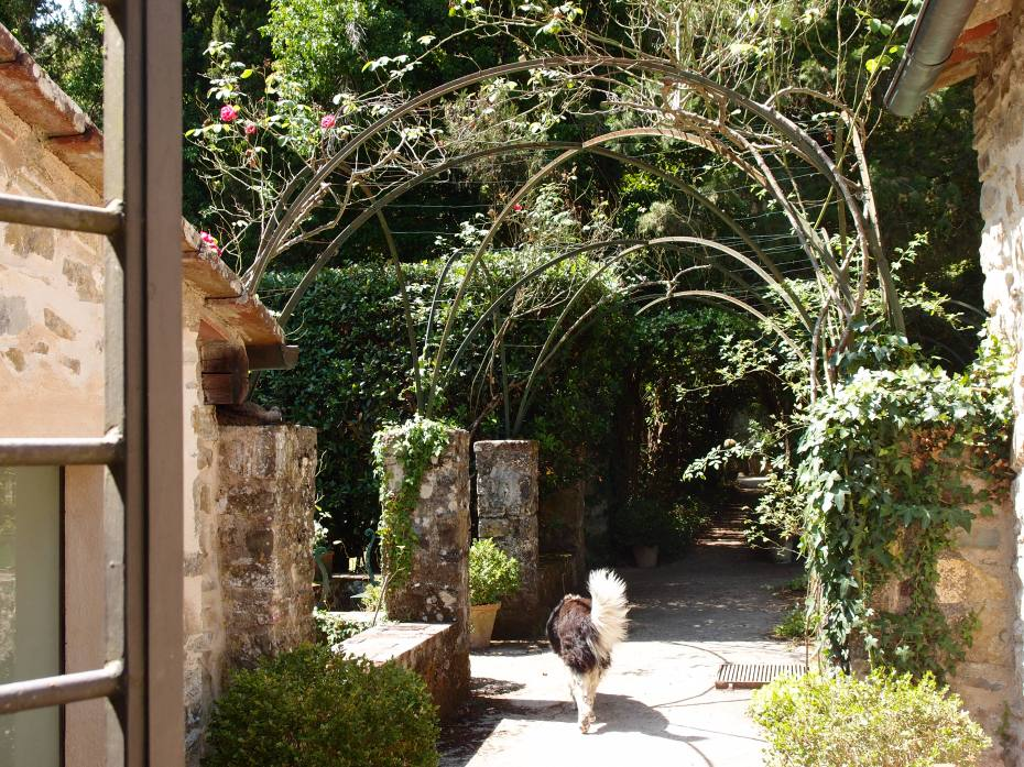 Our Lead Dog turns away from the Convent, and leads us toward a long Arbor, and into the Garden.